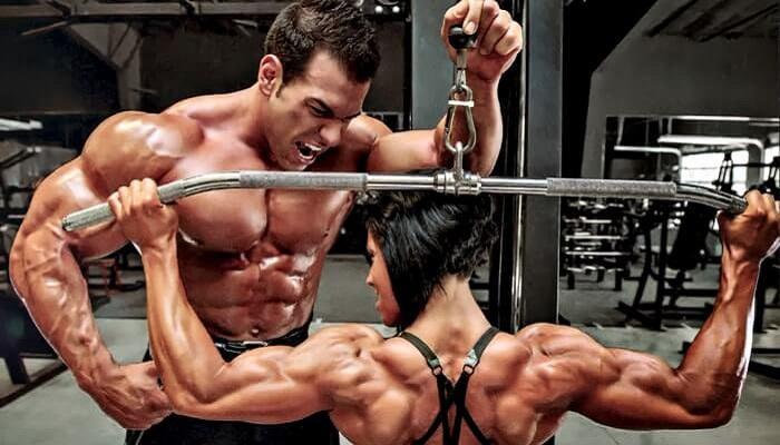 weight lifter belt